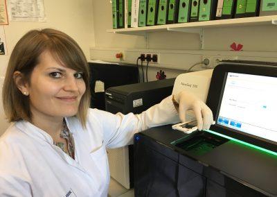 Dr. Carina Heydt